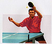 Barry Hayward's Table Tennis Bibliography